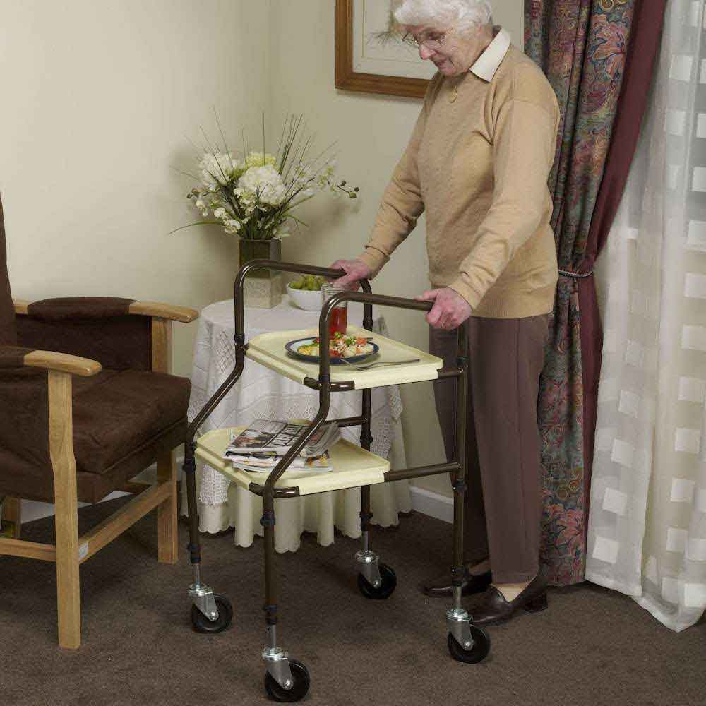 Indoor Walkers & Trolleys